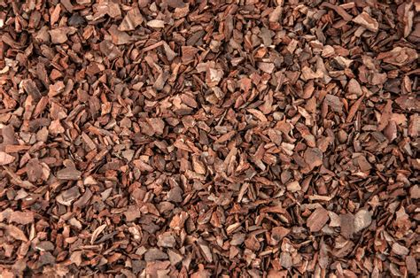 pine bark mulch uses are there benefits of pine bark mulch in gardens