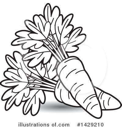 free royalty free clipart carrot clipart 1429210 illustration by lal perera