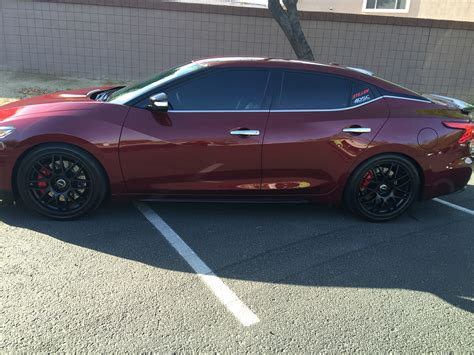nissan maxima lowering springs lowering springs maxima forums
