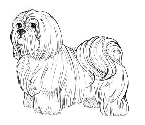 coloring book pages dog breeds dog breed coloring pages coloring furry friends