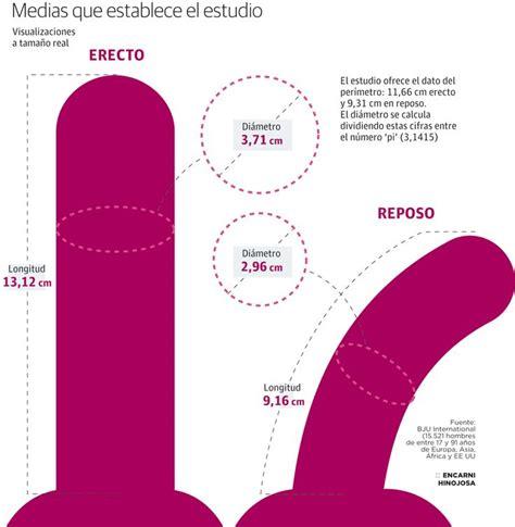 httpzoo penes gruesos y mujeres 191 cu 225 l es la medida de un pene normal sistema