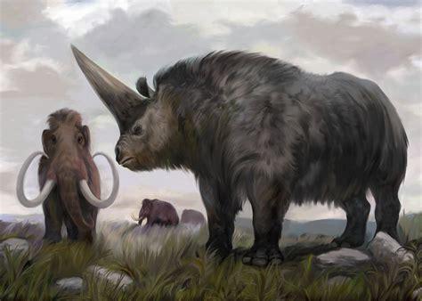 imagenes de animales extinguidos 10 animales extintos que podr 237 an ser resucitados por los