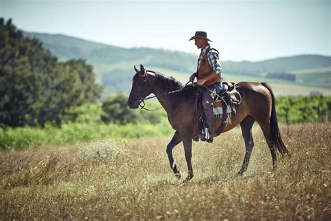 the greatest horses in western cinema ride tv unbridled 9 best health benefits of a dr heben