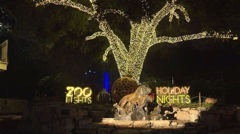 holiday lights luminate san antonio zoo