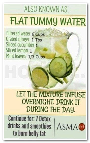Mayo Clinic Detox by Best 25 Mayo Clinic Diet Ideas On