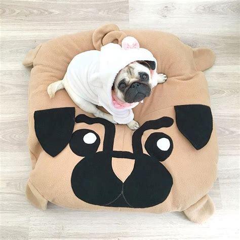 when is national pug day die besten 25 national pug day ideen auf fr 246 hlichen nationalen tag des