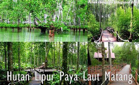 Bio Di Malaysia kepelbagaian bio hutan paya bakau alamblogr