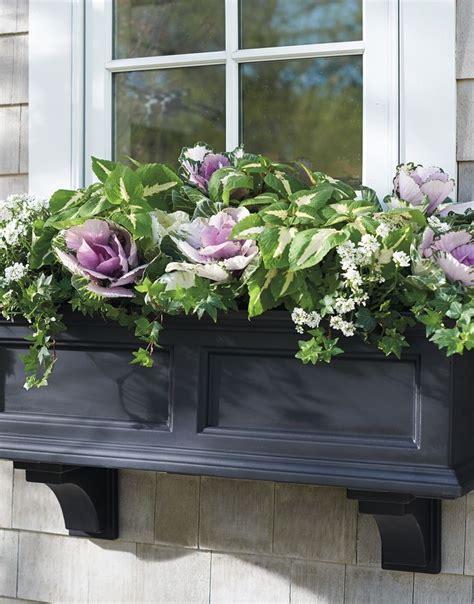 window boxes planters best 25 window boxes ideas on window box