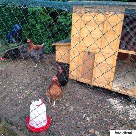 per galline pollaio mobile in legno per 10 galline ovaiole