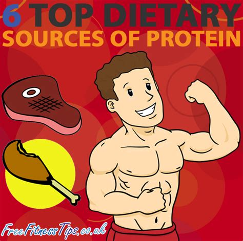 6 protein sources 6 top dietary sources of protein free fitness tips