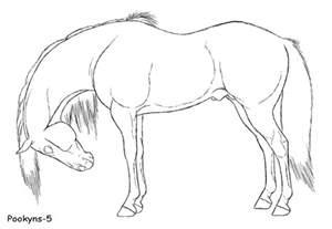 horse side lineart by pookyhorse on deviantart