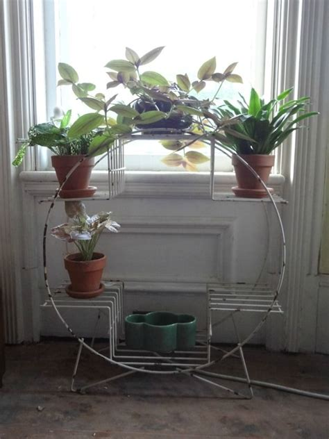 best 25 indoor plant stands ideas on pinterest indoor plant stands quality dogs