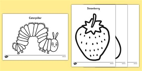 Hungry Caterpillar Templates Free by Colouring Sheets To Support Teaching On The Hungry