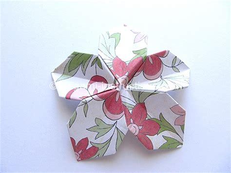 Origami 5 Petal Flower - origami modular 5 petal flower folding