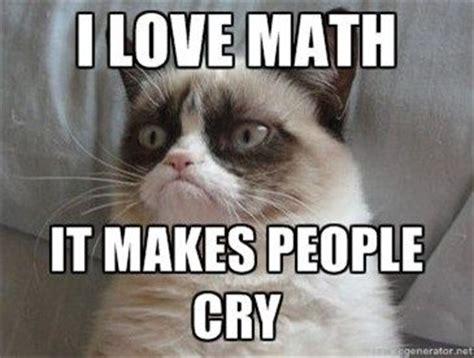 Grumpy Cat Love Meme - even grumpy cat likes math grumpy cat grumpy cat meme