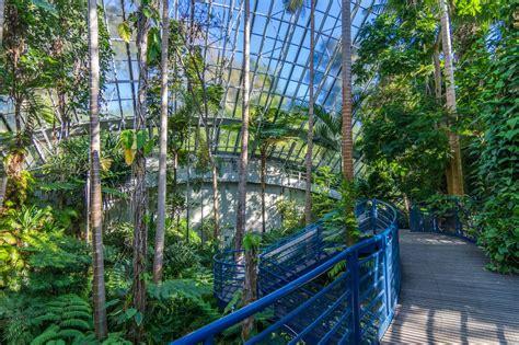 bicentennial conservatory adelaide   beautiful