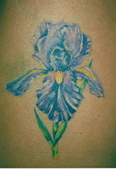 red queen tattoo chattanooga iris from red queen tattoo in chattanooga tn 37411