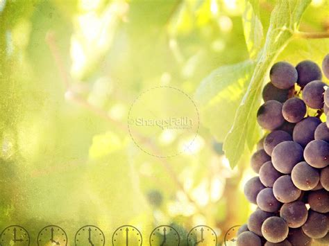 laborers in the vineyard powerpoint template powerpoint