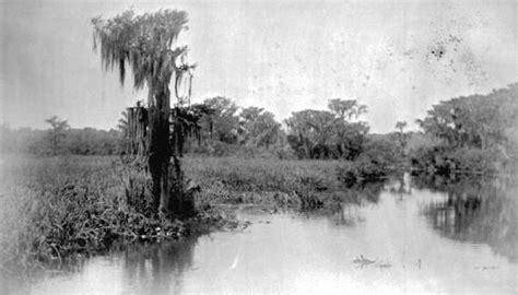 Sumter County Fl Court Records Florida Memory View Of Panasoffkee Lake Sumter County Florida