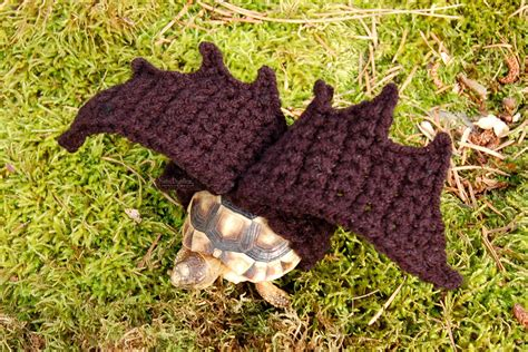 Gw Sweater Leopard animal lover bradley sells crocheted for tortoises and a snail