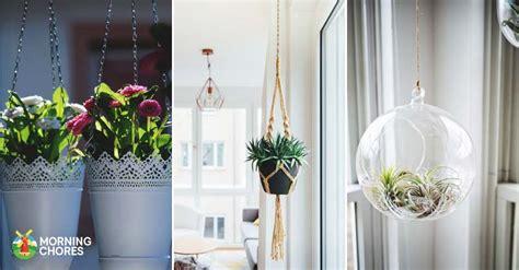 charming diy indoor hanging planters  display
