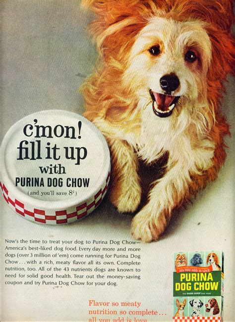 puppy ads purina food ad www imgkid the image kid has it