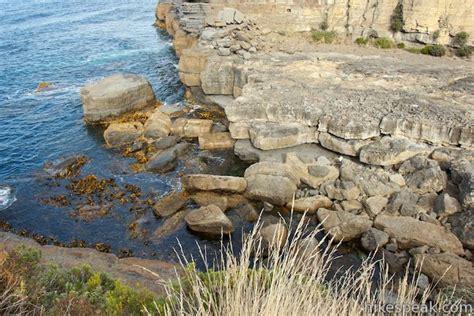 Tas Fossil 52 blowhole fossil bay lookout tasmania hikespeak