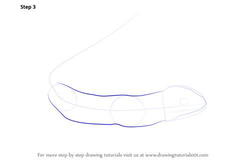 Drawing Bases by Learn How To Draw A Sand Lizard Reptiles Step By Step