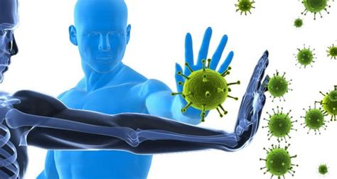 suplemen  memperkuat sistem kekebalan tubuh