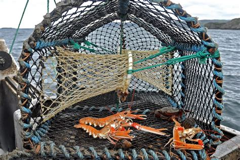 187 ntspp 417 big dave s crossword blog - Prawn Fishing Boat Crossword Clue