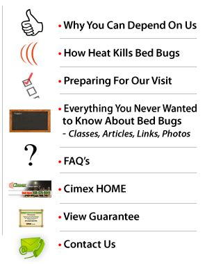 what temperature kills bed bugs buttonstext