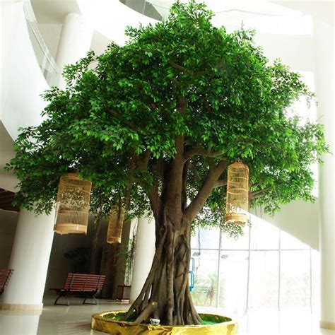 trees for sale wholesale wholesale artificial banyan trees bonsai trees large