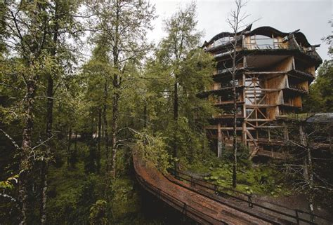 coolest treehouse in the world treehouse hotels the world s 10 coolest treehouse hotels