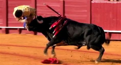 Fighting Looks Still by Hbo S Real Sports Looks At Bullfighting Still Popular In