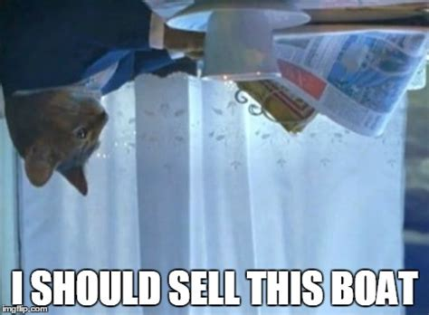 I Should Buy A Boat Cat Meme - whenever a storm comes imgflip