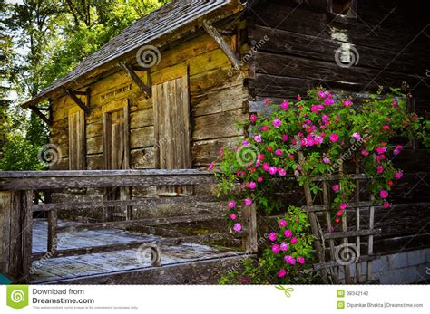 an abandoned wooden cabin inside the forest stock