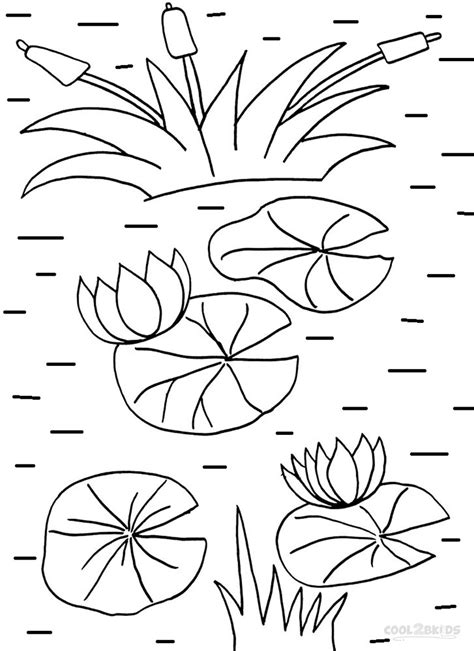 lily pad coloring page printable coloring pages