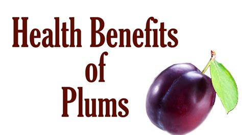 Plumb Benefits by Health Benefits Of Plums Benefits Of Fruits And Veggies