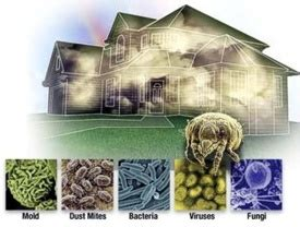 bacteria in ventilation systems airtek