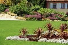 garten yucca umpflanzen yucca umpflanzen 187 so setzen sie ihre palmlilie um