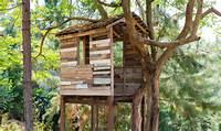Construire Une Cabane Dans Un Arbre Fabriquer  La Pause