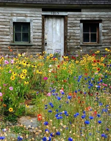 Wildflower Garden Ideas 13 Best Images About Front Yard Ideas On Gardens Modern Farmhouse And Pathways