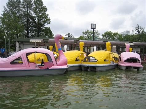 swan boats japan live from japan 187 blog archive 187 a swan boat built for two