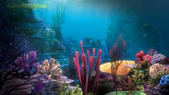 Fauna Aquascape Underwater World Wallpapers Hd Pictures One Hd Wallpaper