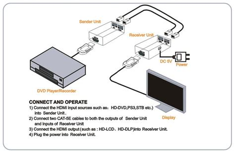 cat5 cat5e wiring diagram get free image about wiring