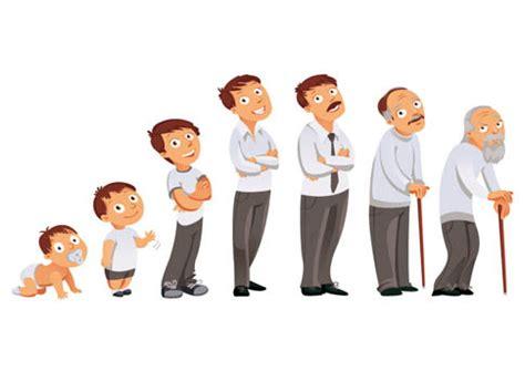 imagenes del ciclo de la vida humana etapas de la vida mi dietista en plona y navarra