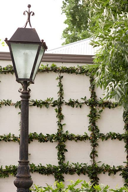 green walls trellised vines espalier trees