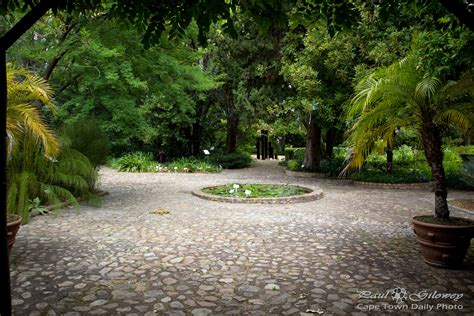 Stellenbosch Botanical Gardens with The Green Of Stellenbosch Botanical Gardens Cape Town Daily Photo