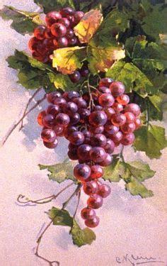 Papier Lenschirm Selber Machen 1670 by Yvonne Harry Watercolor Weintrauben Fr 252 Chte Bilder