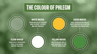 phlegm color meaning what is a chest cold benylin 174 canada